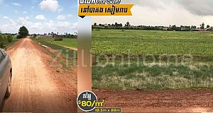 Agricultural Land For Sale/ដីលក់ នៅបាគង សៀមរាប