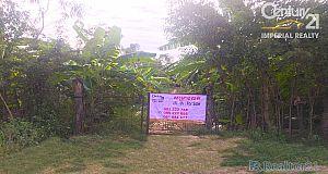 ដីលក់លើផ្លូវជាតិលេខ 21  Land For Sale (P-000513)