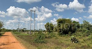 LAND for SALE on road 30m in Udong