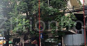 Flat For Rent on street 63 ផ្ទះសំរាប់ជួលនៅផ្លូវត្រសក់ផ្អែម ទីតាំងល្អសំរាប់អាជីវកម្ម