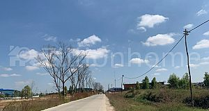 CORNER LAND For Sale on Concrete road 20m in Kouk Roka (Kob Srov)